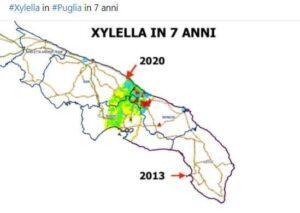 Mappa Xylella Puglia.Xylella Aggiornamento Monitoraggio Al 26 Settembre 2020 Italia Olivicola Consorzio Nazionale